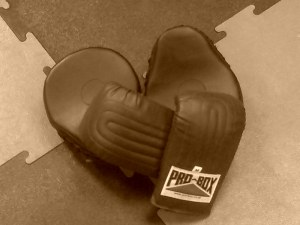 circuit training gloves